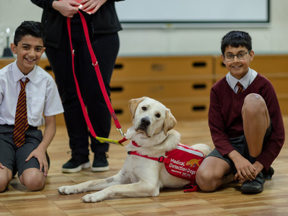 Hearing Dogs for the Deaf 2018